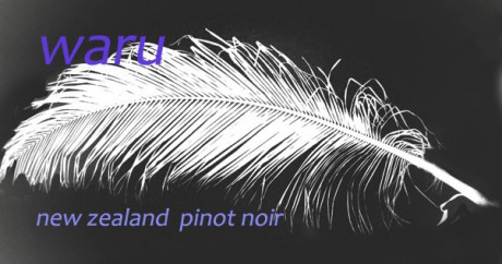 pinot noir 1
